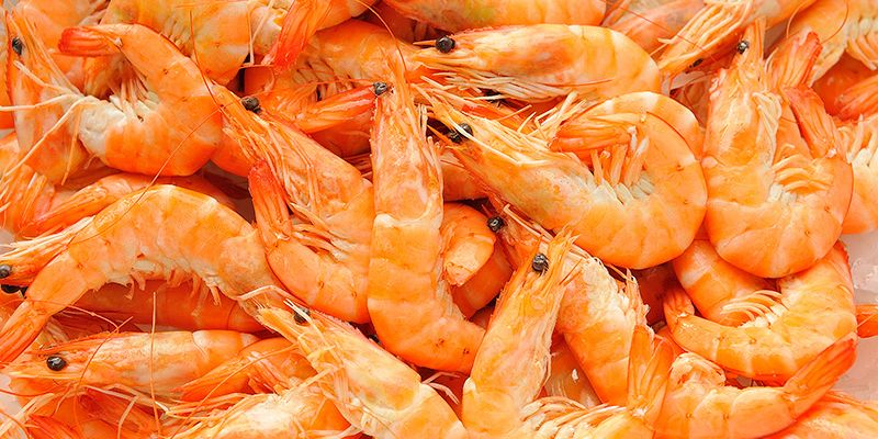 K Stansfield – Wholesale Fish and Seafood Supplier Grimsby